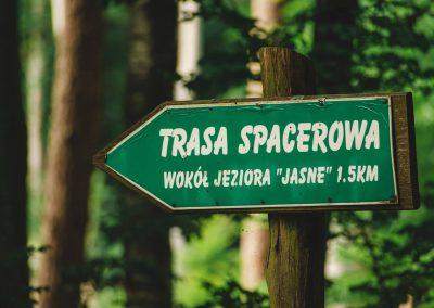 Trasa spacerowa, jezioro Jasne